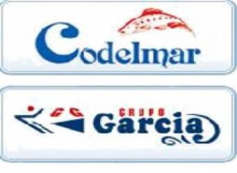 Codelmar 220x161